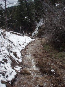 water and snow melt running down the trail