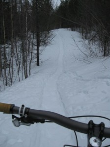 Looking down a snowshoe trail.  It looks really prime for mountain bikes.